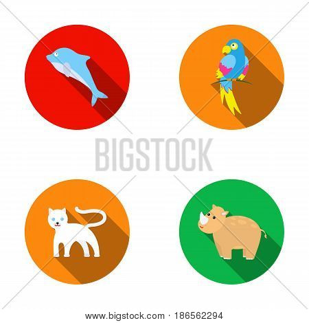 Rhinocero, popugay, panther, dolphin.Animal set collection icons in flat style vector symbol stock illustration .