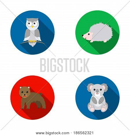 Koala, owl, bear, hedgehog.Animal set collection icons in flat style vector symbol stock illustration .