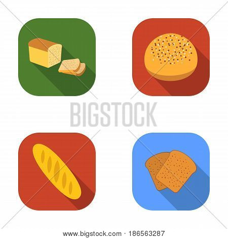 Half a loaf, a loaf of rifle, toast, a burger for a hamburger.Bread set collection icons in flat style vector symbol stock illustration .
