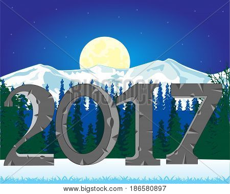 Night in wood and approaching new year