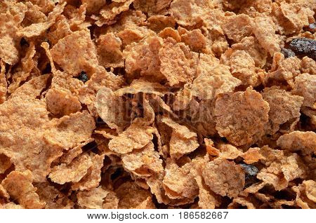 An abstract image of bran cereal with raisins.