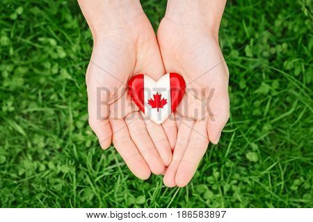 Macro closeup shot of hands palms holding round badge with red white canadian flag maple leaf on green grass forest nature background outside Canada Day celebration