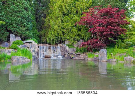 Waterfall by the Lake in the Park with Red Maple Trees and Plants