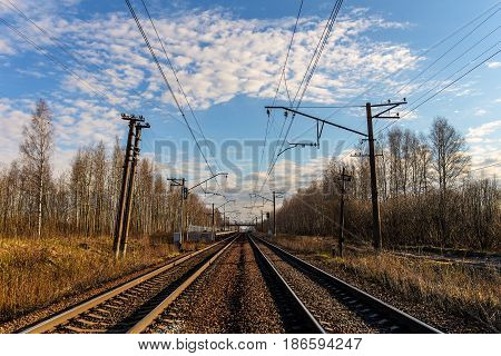 Landscape with a railway in the sunny morning