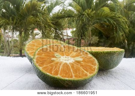 Red Citrus Fruit With A Green Skin On A Background Of Palm Trees Macro