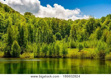 Mountain Lake Among The Forest
