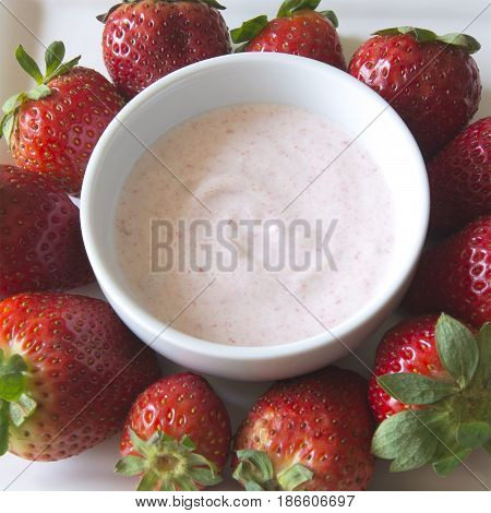 Greek strawberry yoghurt in a bowl surrounded by delicious strawberries
