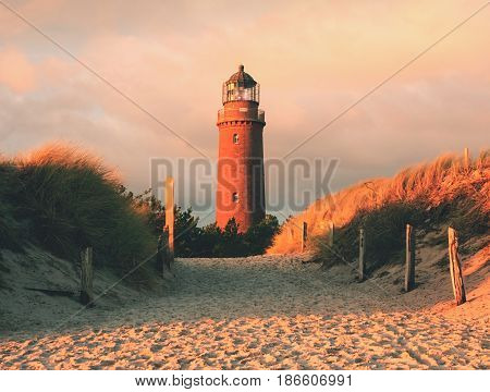Historical Lighthouse. Shinning Lighthouse,  Dunes And Pine Tree. Tower Illuminated