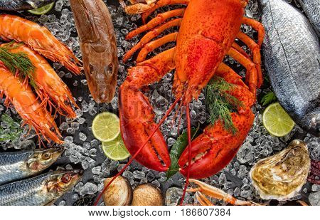 Whole lobster with seafood, mussels, prawns, fish, salmon steak, octopus, oyster and other shells served on crushed ice.