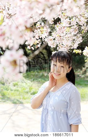 Portrait of young japanese woman with cherry blossom