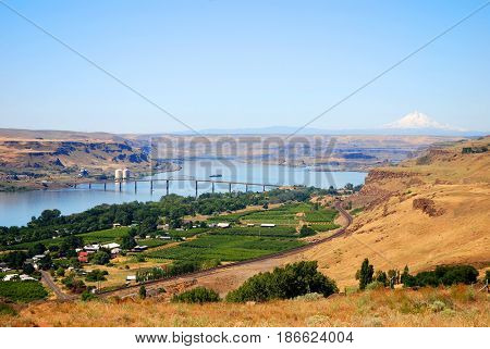 The Dalles Bridge crossing the Columbia River between The Dalles, Oregon, and Maryhill, Washington, with vineyards in the foreground and Mt. Hood in the background