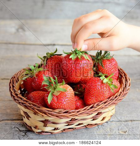 Kid takes a strawberry from a basket. Small kid holds a strawberry in hand. Kids healthy food. Juicy red strawberries in a basket. Vintage wooden background. Closeup