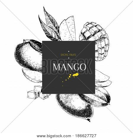Vector hand drawn smoothie bowls poster. Exotic engraved fruits. Square border composition. Mango whole half slice cubes and leaves. Use for exotic restaurant food party.