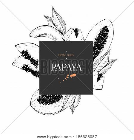 hand drawn smoothie bowls poster. Exotic engraved fruits. Square border composition.Papaya whole half slice and leaves. Use for exotic restaurant food partty