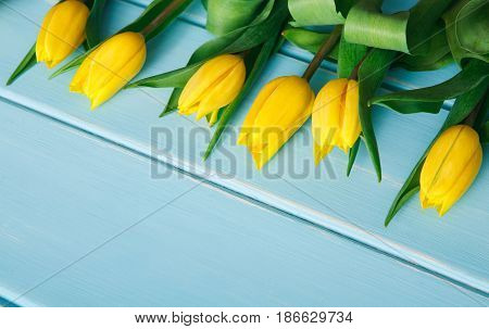 Yellow tulips row on blue wood background, copy space. Spring fresh flowers, mockup for greeting card