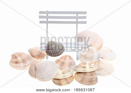 Summer Vacation Concept. Conch Mollusc Shells On Sea Bench