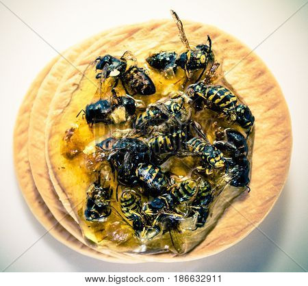 Biscuits smeared with honey. The honey bee is stuck. poster
