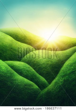 Landscape with green field and hills