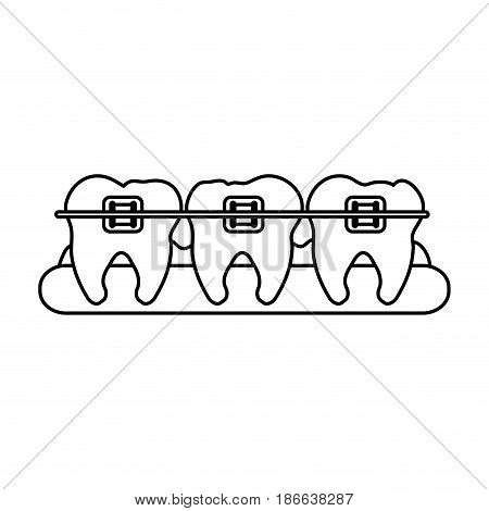 molars with braces dental care related icon image vector illustration design