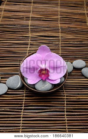 Pink orchid with gray stones on mat