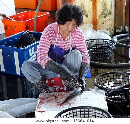 KAOHSIUNG TAIWAN -- MARCH 30 2017: A worker at the Xinda fish market cleans freshly caught fish for customers.