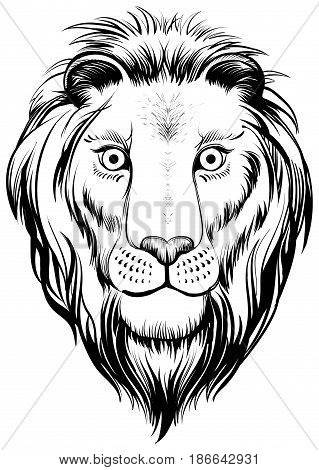 Isolated lions head vector black and white illustration. Linear art.