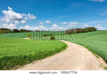Spring Landscape With Dirt Road And Green Fields