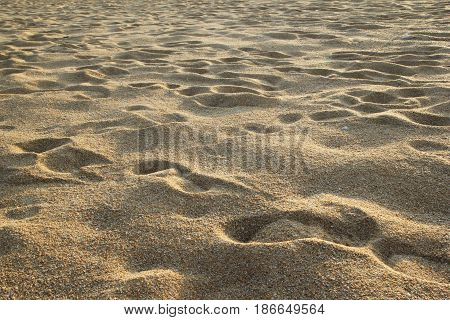 Travel To Island Phuket, Thailand. The Footprints Of People On The Sand Beach.