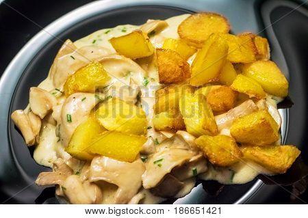 Plate With Mushroom Sauce And Potatoes