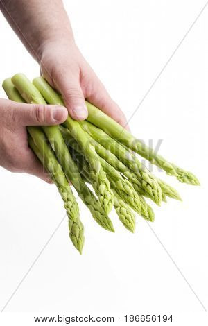 Fresh green Asparagus as close-up in hands isolated