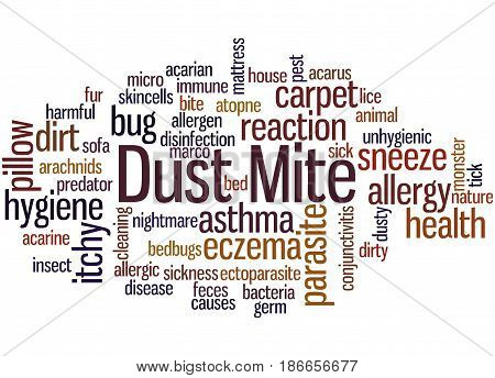 Dust Mite, Word Cloud Concept 2