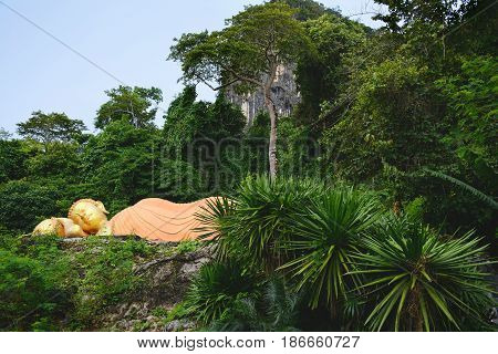 Hidden Buddha statue in tropical jungle. Krabi province Thailand.