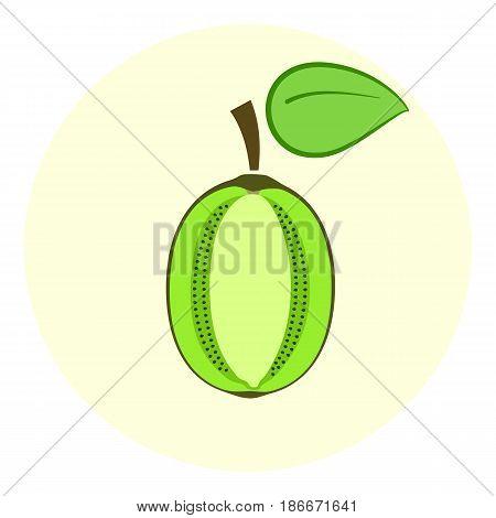 Half Green Kiwi Icon, Kiwi Split In A Half