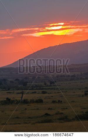 Sunset over the savanna in Masai Mara. Kenya, Africa