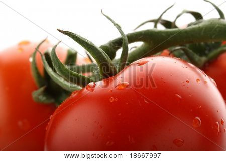 perfect red wet tomato with tomatoes on background, soft focus, super macro shot.