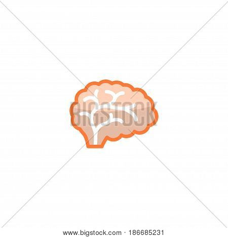 Flat Brain Element. Vector Illustration Of Flat Mind Isolated On Clean Background. Can Be Used As Brain, Mind And Thinking Symbols.