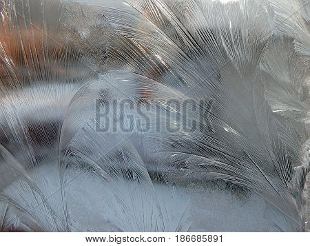 Frost  -  painting on glass , background ,