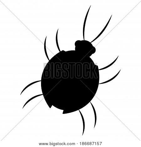 virus bug hacking computer software vector illustration
