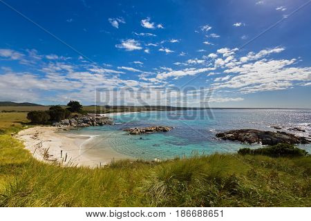 Bay of Fires in Tasmania. White sand beach with beautiful scenic view of turquoise blue water, orange lichen growing on granite rocks formations, rocky coastline in Australia