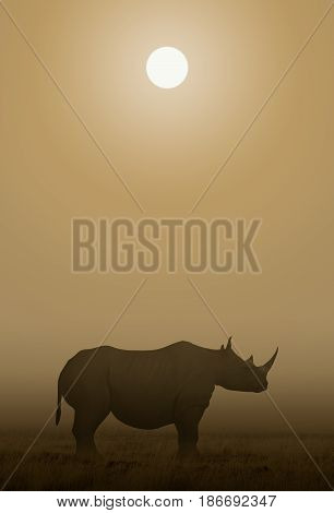 3d illustration of a African Rhino standing in the Savanna under the sun.