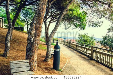 Wooden benches on walkway under the trees in the city park Parc del Castell at summer day. Path, mediterranean nature in spanish town Malgrat de Mar, Catalonia, Costa Brava, Spain.