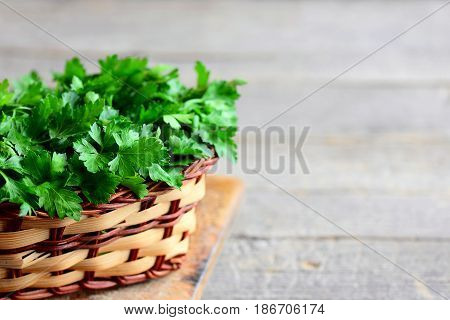 Green parsley leaves in a basket. High antioxidant herbs. Parsley on vintage wooden background with copy space for text. Rustic style. Closeup