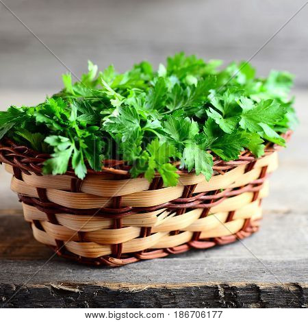 Fresh parsley sprigs in a wicker basket and on a wooden background. Garden parsley. Rich source of anti-oxidant nutrients, folic acid, vitamin K, vitamin C and vitamin A. Rustic style. Closeup