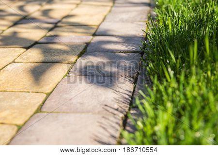 Lawn sidewalk grass landscape pathway walkway pavers