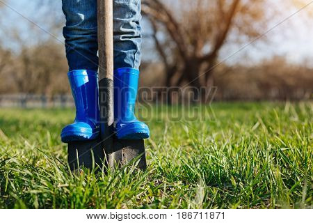 Juvenile helper. Little boy wearing bright blue wellies helping his family members by digging a spade into ground