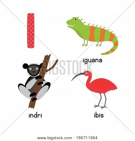 Cute Animal Zoo Alphabet. Letter I for iguana, ibis, indri. Fun teaching aids for Kids