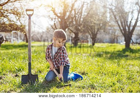 Juvenile helper. Shot of a little child sitting on a green vernal lawn and digging a hole in the soil for future fruit trees in spring