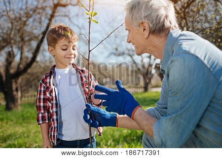 Teaching process. Two male family member taking care of nature by gardening together in a country house yard