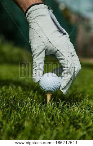 Close-up golf ball golf ball on tee golf tee leisure golf club activity