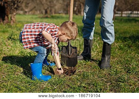 Saving mother nature. Little boy wearing a red plaid shirt digging a hole for a new tree while gardening with his grandfather in a country house yard
